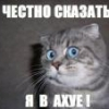 votren88